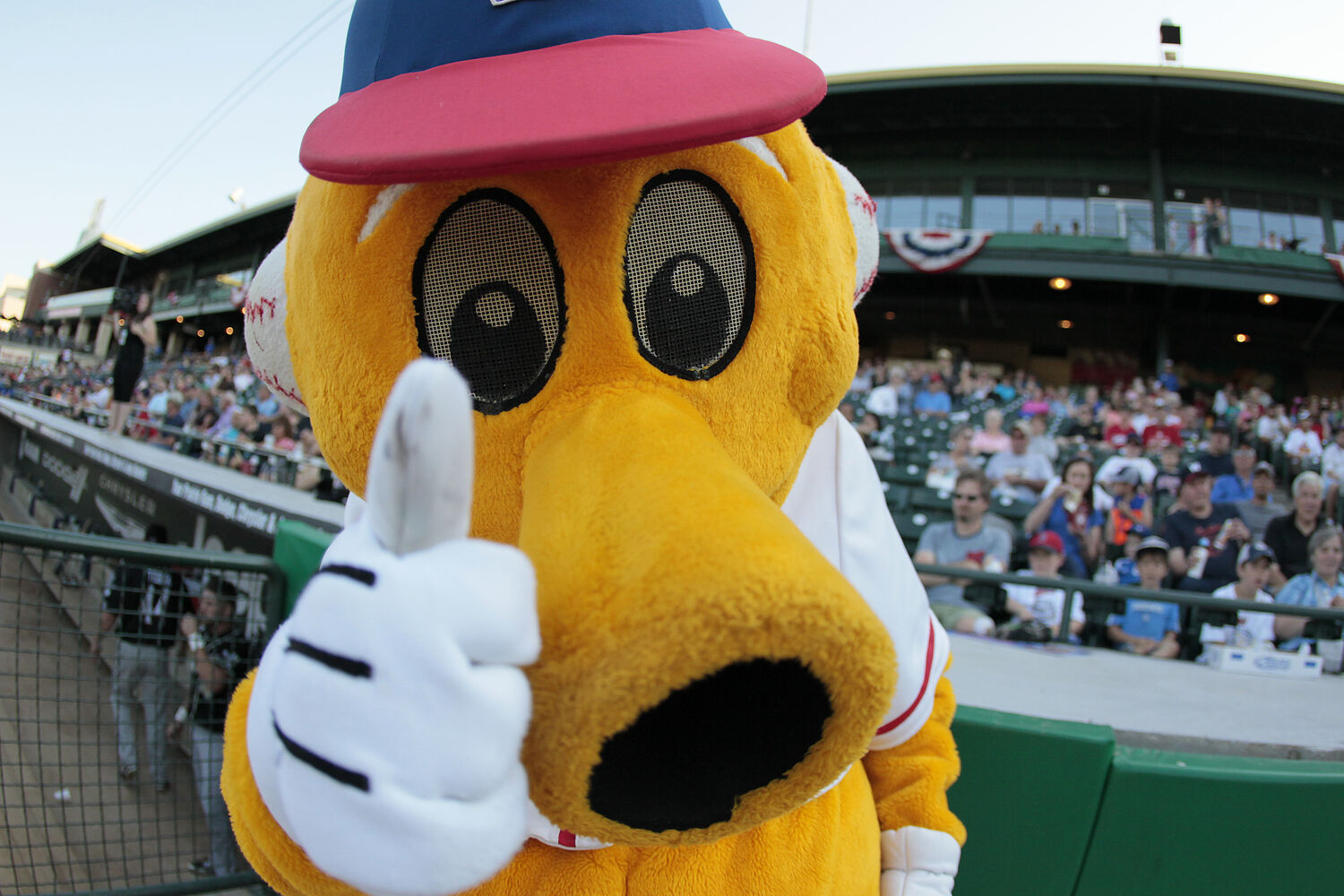 Goldeyes mascot Goldie greets fans at the All-Stars Skills Competition in Winnipeg. (John Woods / Winnipeg Free Press)