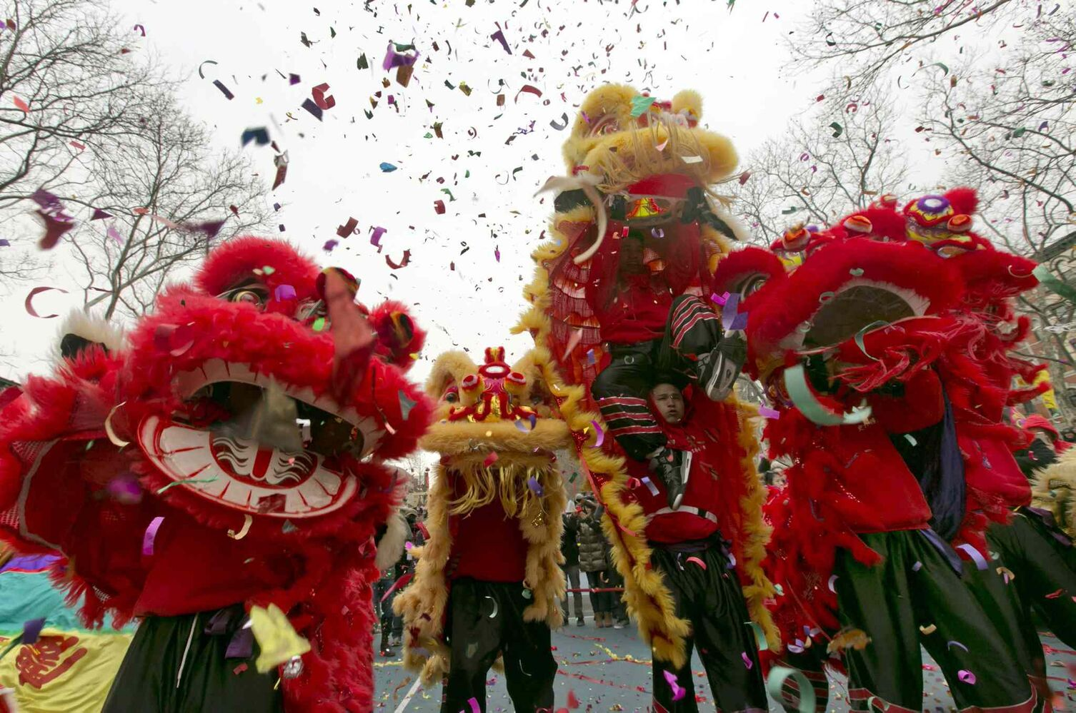 Lion dancers perform during the Asian Lunar New Year Firecracker Ceremony and Cultural Festival, in Roosevelt Park, in New York's Chinatown, Friday, Jan. 31, 2014.