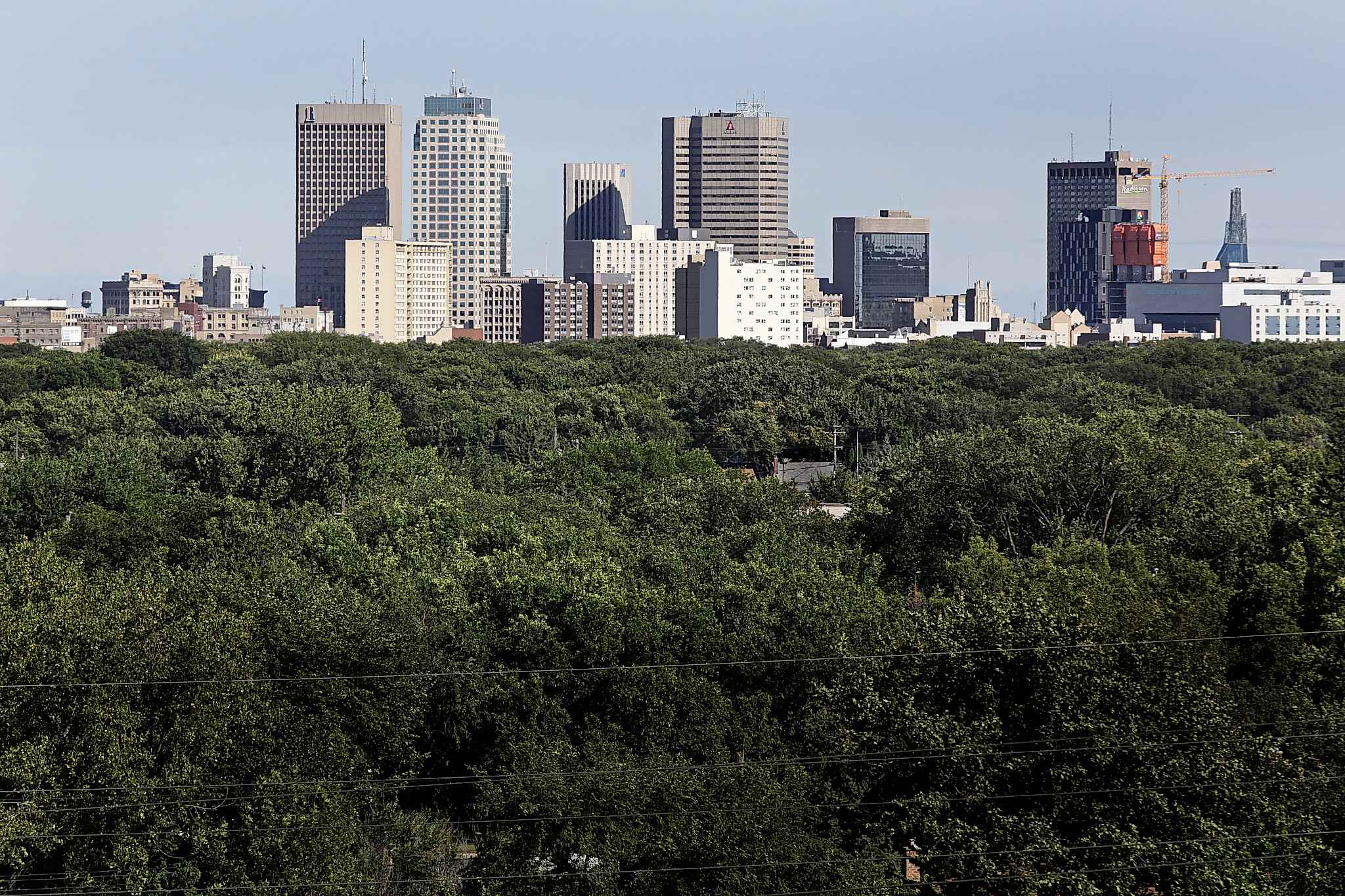 Winnipeg without its majestic street tree canopy is difficult to imagine. The economic, social and environmental impact would be devastating.  (John Woods / Free Press files)