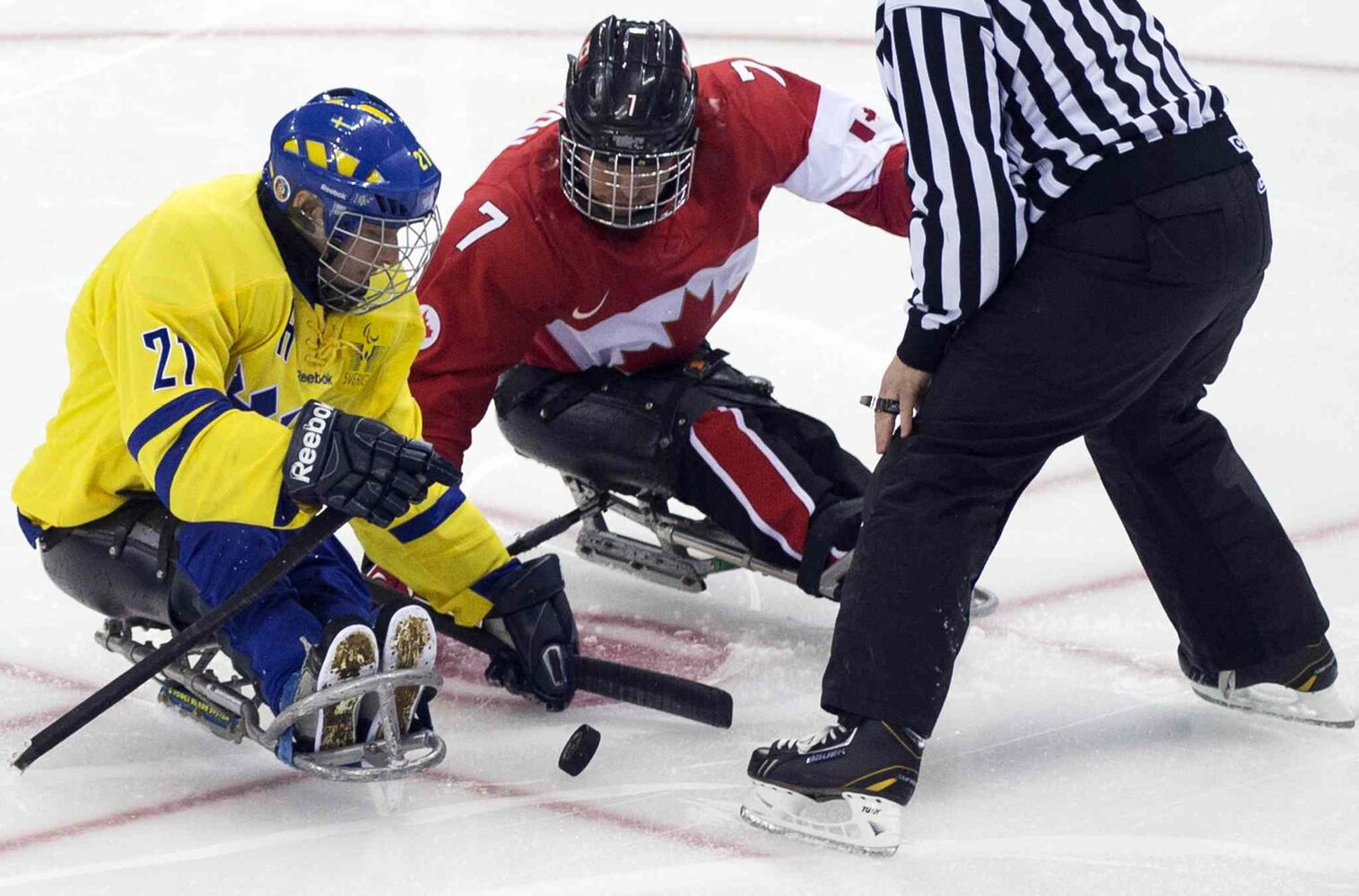 Marc Dorion of Canada, right, Marcus Holm and of Sweden, left, fight for a puck during the ice sledge hockey match at the Shayba Arena at the 2014 Winter Paralympics in Sochi, Russia, Saturday, March 8, 2014.  (Pavel Golovkin / The Associated Press)