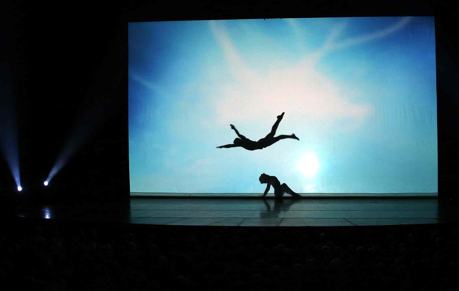 Le Ombré features acrobats and dancers using their silhouettes to create shadow art on both sides of a large screen.