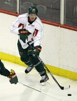 Minnesota Wild defenseman Ryan Suter passes the puck during NHL hockey training camp in St. Paul, Minn., Friday, Sept. 19, 2014. (AP Photo/Ann Heisenfelt)