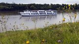 M.S. River Rouge offers Friday party cruise to Bomber game