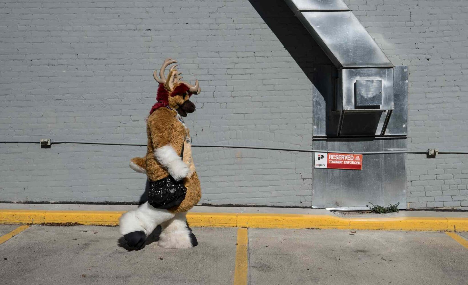 Heather dressed in her furry suit as Watuki.  (MIKE DEAL / WINNIPEG FREE PRESS)