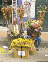 A well-dressed Bogota vendor sells flowers on the street.