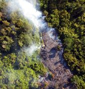 This Oct. 22, 2014, photo provided by the University of Hawaii at Hilo, shows an aerial view of the lava flow near the town of Pahoa on the Big Island of Hawaii. (AP Photo/University of Hawaii at Hilo)