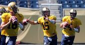 QB Hall will start for Bombers against Ticats