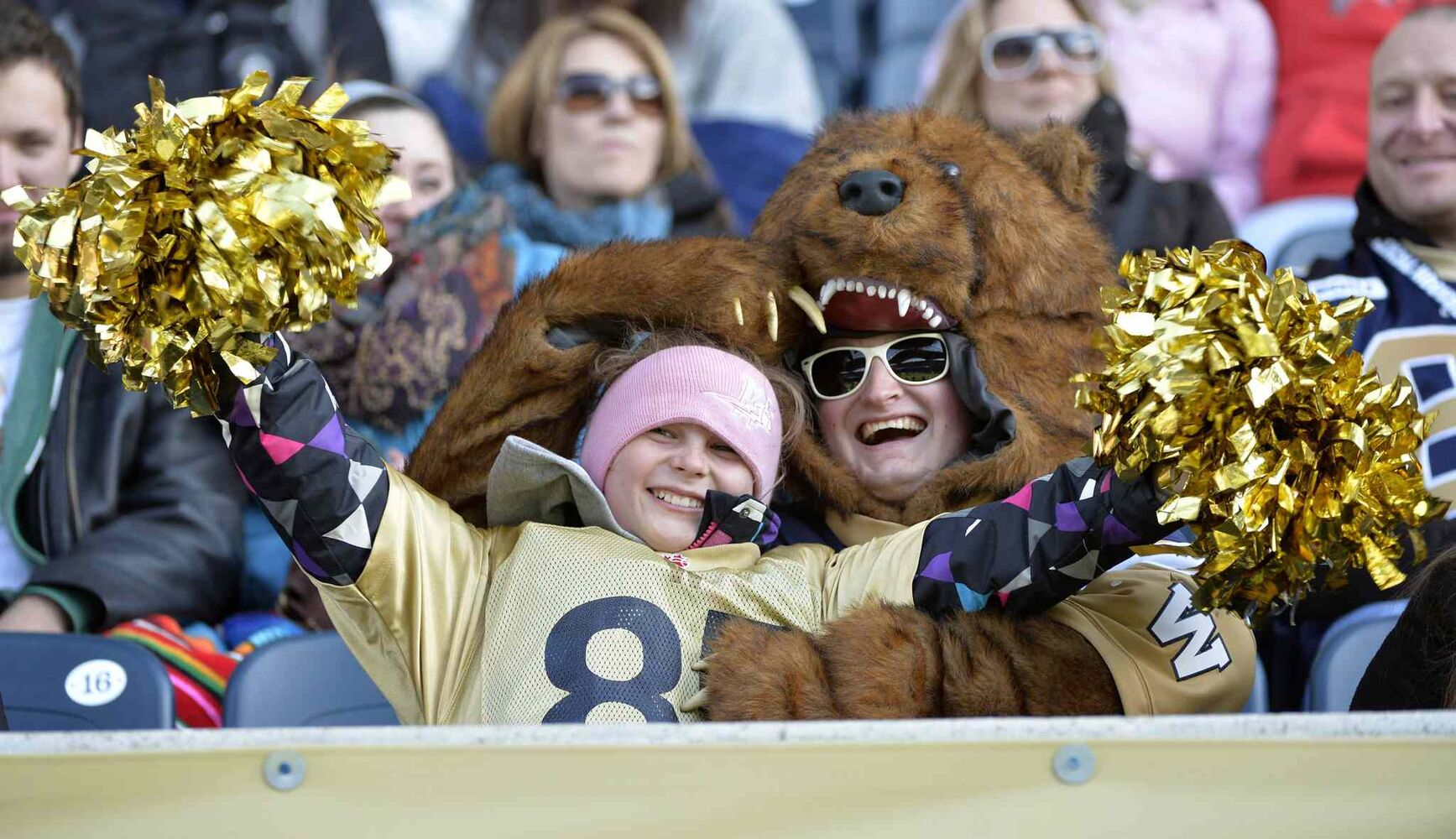 Winnipeg football fans watch the game between the Winnipeg Blue Bombers and Hamilton Tiger-Cats during the second half of CFL action in Winnipeg Saturday, November 2, 2013. THE CANADIAN PRESS/Fred Greenslade