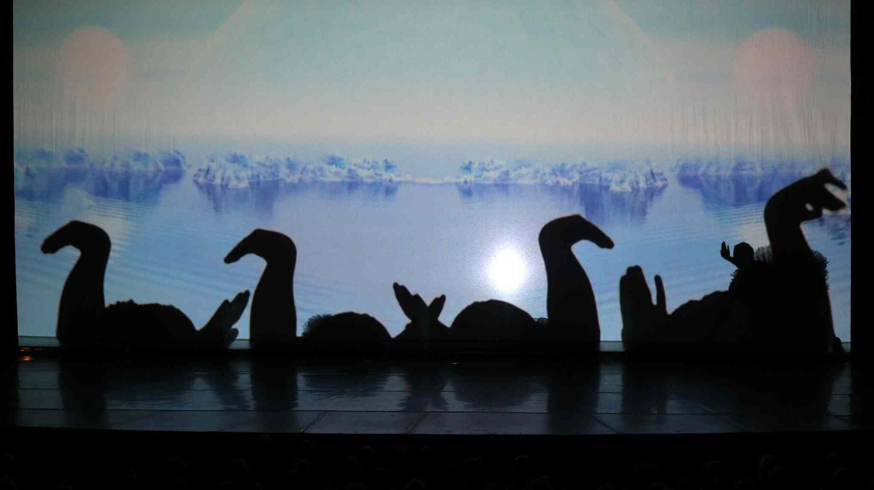 Le Ombré features acrobats and dancers using their silhouettes to create shadow art on both sides of a large screen. Le Ombre, a part of the WSO pops series at the Centennial Concert Hall, Saturday, November 9, 2013. (TREVOR HAGAN/WINNIPEG FREE PRESS)