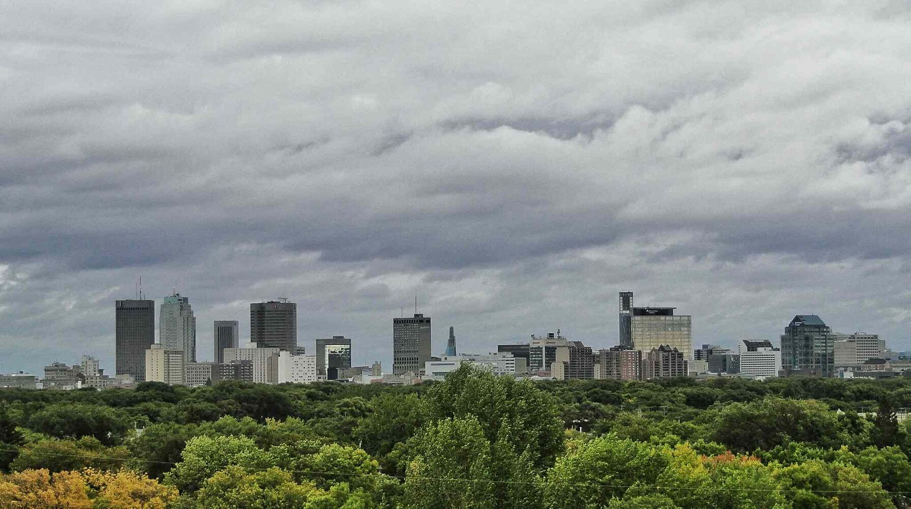 Winnipeg is truly a green city. (Mike Deal / Winnipeg Free Press)