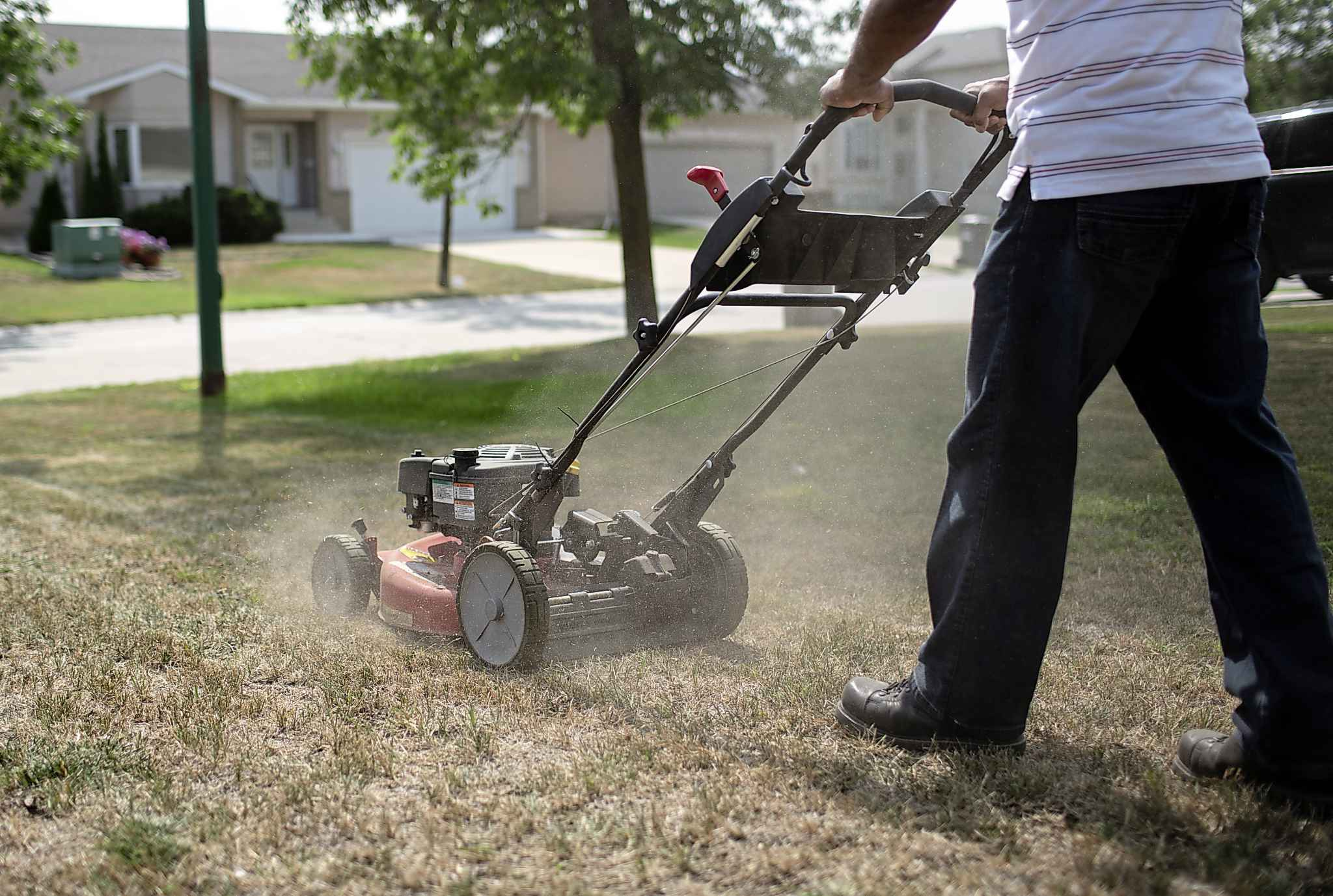 ANDREW RYAN / WINNIPEG FREE PRESS FILES</P> The dry weather is having an impact on lawns -- but it's also affecting crops and increasing the risk of wildfires.