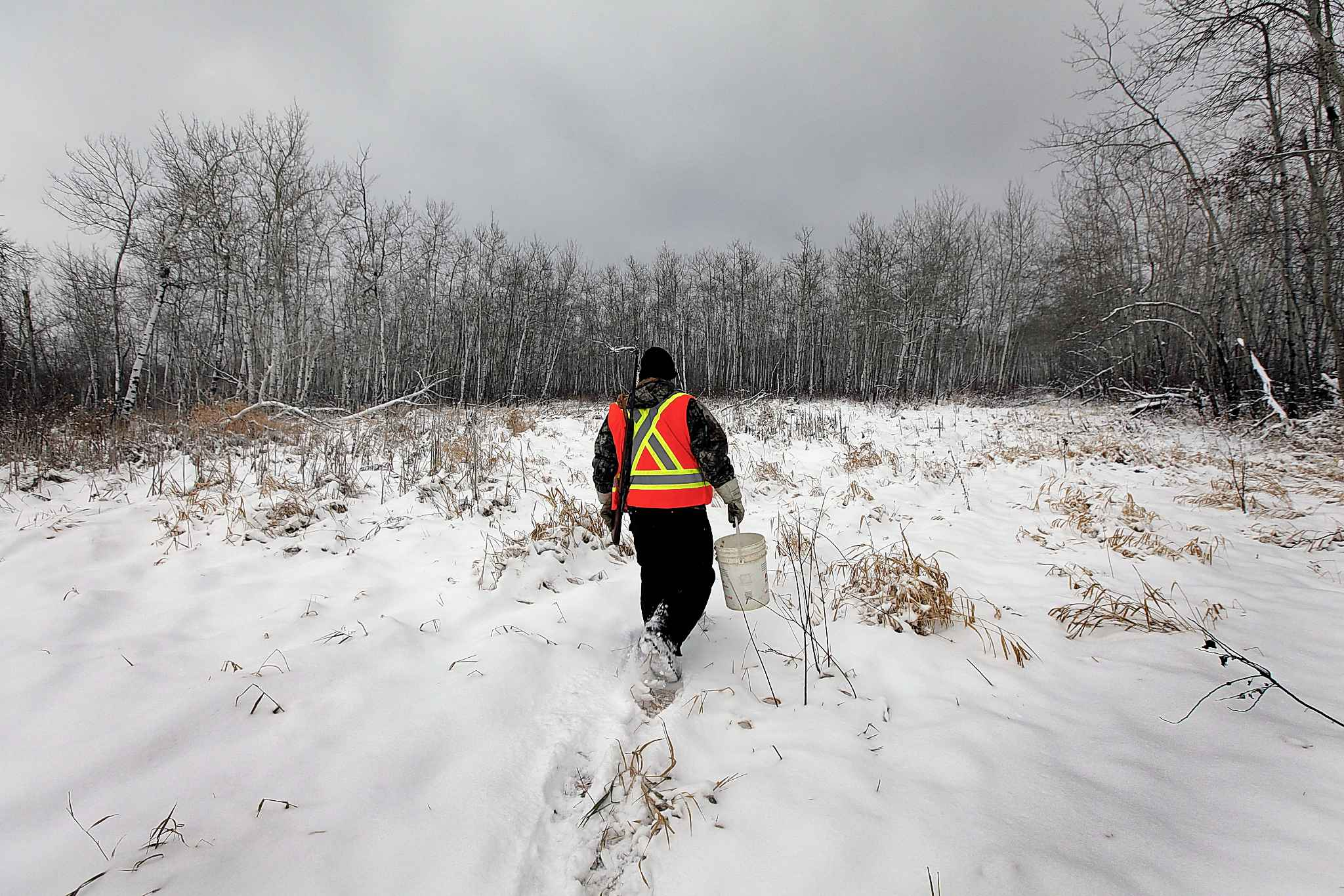A local hunter -- on the same half section of Crown Land Thelma Krull's remains were found -- walks into the bush and swamp in search of venison.