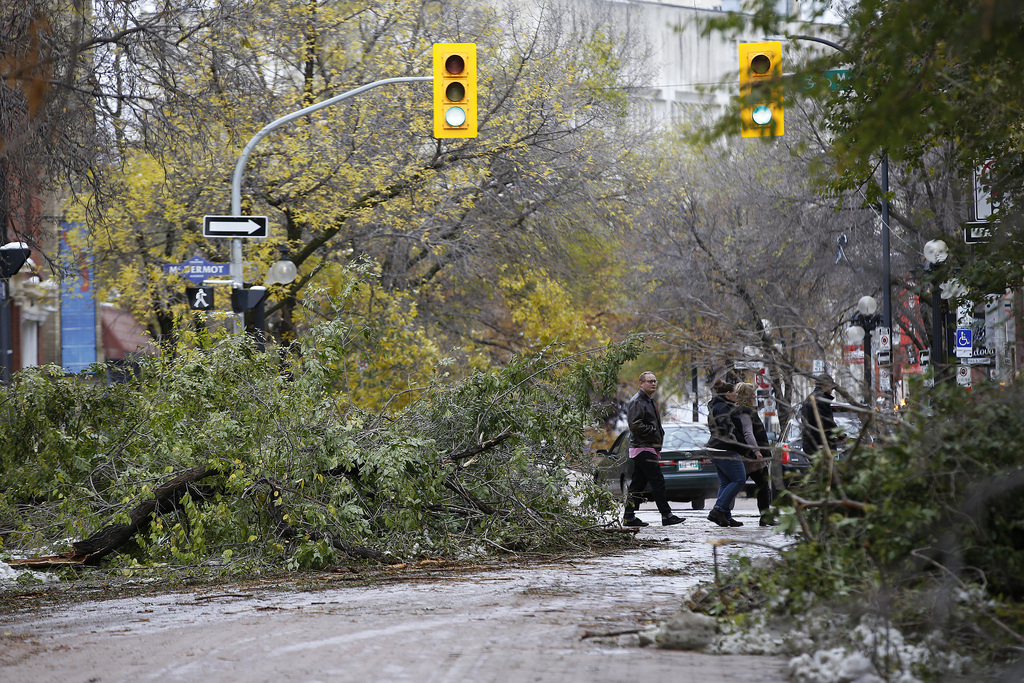 Pedestrians make their way through tree branches on Albert Street and McDermot Avenue a day after the storm. (John Woods / Winnipeg Free Press files)