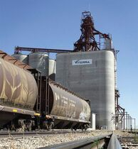 A grain elevator is shown near Regina, Sask., Aug.30, 2007. A coalition of agriculture associations says the grain industry is dealing with deteriorating rail service with an 11 per cent shortfall in the supply of railway cars. THE CANADIAN PRESS/Troy Fleece