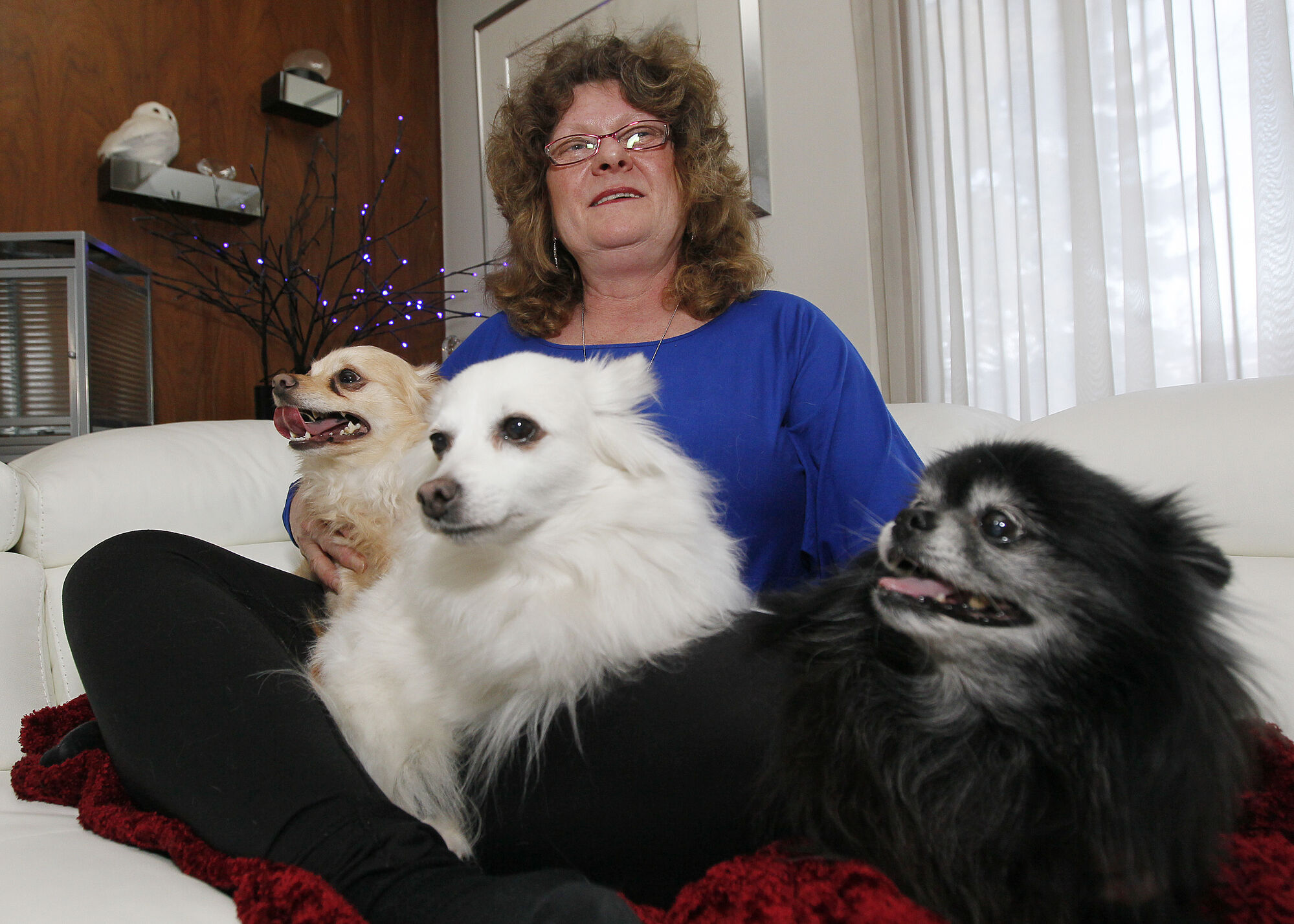 Anne Papadopoulos, a pet-loss counsellor, is photographed in her home with (L to R) Danny, Misha and Nikki Friday.