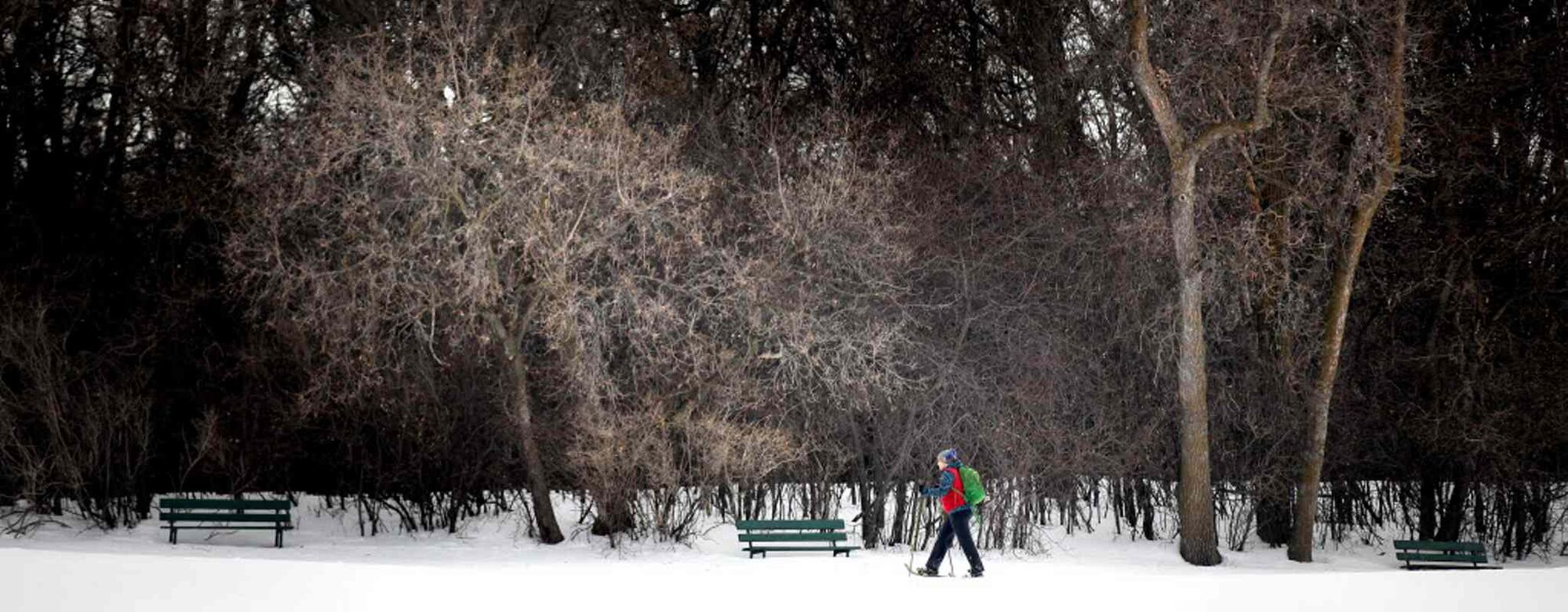 A snow show enthusiast makes the most of the lingering effects of winter walking past buried benches in the still deep snow covering the city. Things were a little frosty this morning when Randy and Joe set off on their search for Spring.  (Phil Hossack / Winnipeg Free Press)
