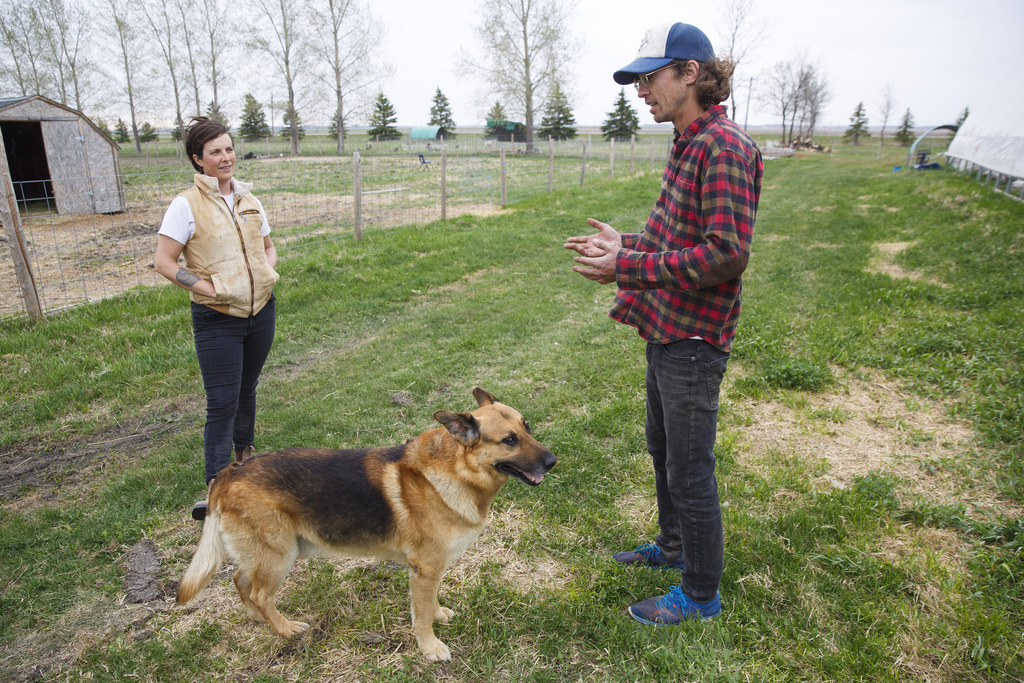 Britt Embry (left) and Justin Girard have been farming together for six years on a 30-acre slice of land just south of Elie. (Mike Deal / Winnipeg Free Press)