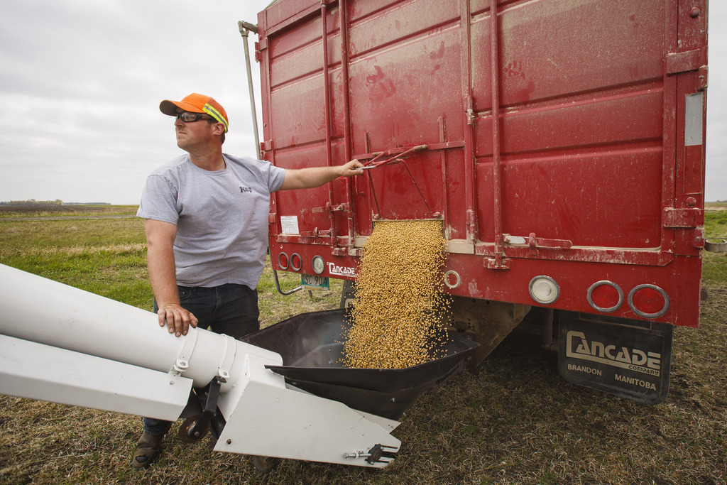 Penner's first attempt at seeding in early May was a messy one. The heavy clay soil was still saturated from last year's October snowstorm, causing machines to stick and tear up the fields. (Mike Deal / Winnipeg Free Press)