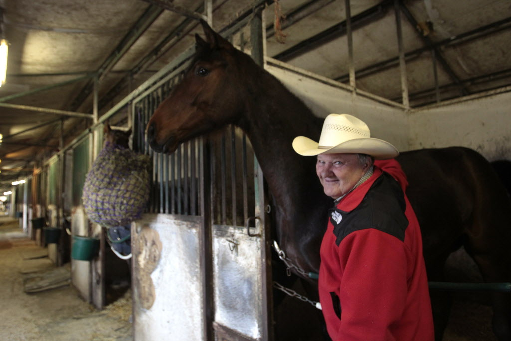 Trainer Emile Corbel has high hopes for two-year-old Explosive Fuse this season.14