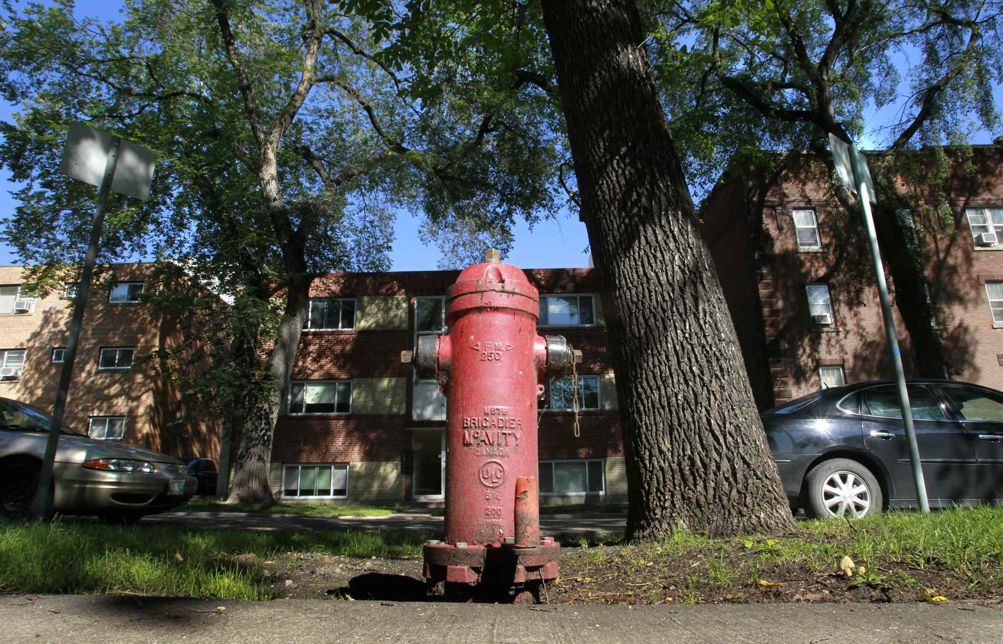 This fire hydrant on Carlton Street between Broadway and Assiniboine Avenue is doing more for the city than dousing fires.