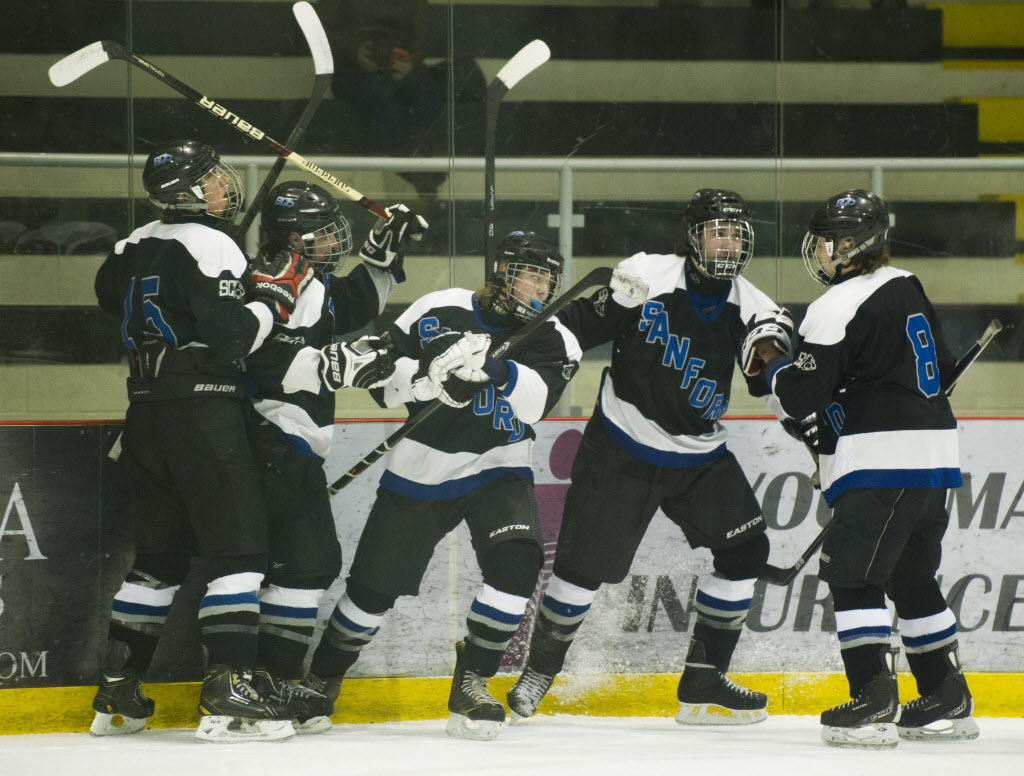 The Sanford Sabres celebrate a goal against the Lord Selkirk Royals during their Winnipeg High School hockey league championship game at the MTS Iceplex Wednesday afternoon. The Sabres won the game. (DAVID LIPNOWSKI / WINNIPEG FREE PRESS)