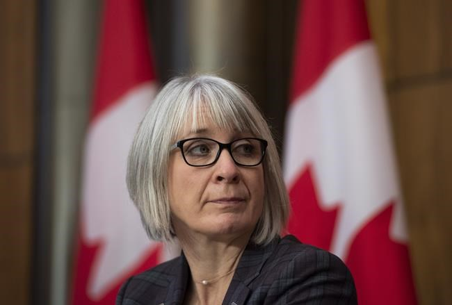 Federal Health Minister Patty Hajdu participates in a news conference on the COVID-19 pandemic in Ottawa, on Friday, Nov. 20, 2020. THE CANADIAN PRESS/Justin Tang