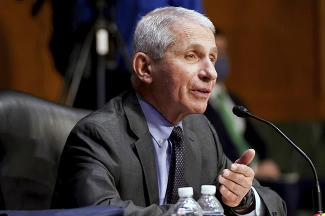 """Dr. Anthony Fauci, director of the National Institute of Allergy and Infectious Diseases, testifies during a Senate Health, Education, Labor, and Pensions hearing to examine an update from Federal officials on efforts to combat COVID-19, Tuesday, May 11, 2021 on Capitol Hill in Washington. Fauci says whether vaccinated Americans will need a booster shot may depend on possible variants during an interview on CBS """"This Morning"""" Friday, May 21. (Jim Lo Scalzo/Pool via AP)"""