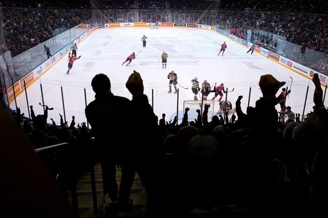 Oshawa Generals fans celebrate as their team score their first goal against Kingston Frontenacs during OHL action in  Oshawa, Ontario on Sunday, January 14, 2018. THE CANADIAN PRESS/Chris Young