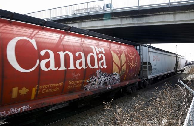 A Canadian Pacific Rail train hauling grain passes through Calgary, Thursday, May 1, 2014. Canada's two largest railways may run out of grain to move and face a revenue challenge in the coming year because of an expected 37 per cent decrease in the domestic grain crop due to drought conditions across the Prairies, says an industry analyst. THE CANADIAN PRESS/Jeff McIntosh
