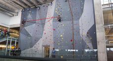 Climbers scale the rock climbing wall in the University of Manitoba's new Active Living Centre to retrieve the red ribbon during the grand opening ceremony of the multi-million dollar facility.