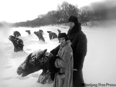 The Hollies Snowshoe club visit frozen horse heads in a scene from Guy Maddin's film, My Winnipeg.