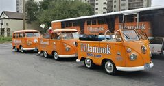 In this undated photo provided by the Manteca Police Department are three Tillamook Cheese vans that were stolen Saturday July 12, 2014. Police in Central California are searching for three bright orange Tillamook cheese vans that were stolen over the weekend. Manteca police say the restored Volkswagen minibuses, worth $100,000 each, vanished early Saturday from a hotel parking lot. They were secured in a trailer pulled by a Ford F-350 pickup that also painted orange. Police say the minivans had stopped in Manteca on a tour promoting the Oregon-based Tillamook County Creamery Association's dairy products. (AP Photo/Manteca Police Dept.)