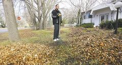 Fort Richmond resident Joel Ostash eyes a huge pile of leaves by his home on Macalester Bay Sunday. The paper waste bags approved by the city for pickup sold out quickly and are hard to come by.