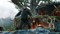 This photo released by Twentieth Century Fox Film Corporation shows Andy Serkis as Caesar in a scene from the film,