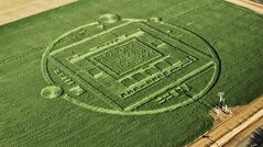 This photo provided by NVIDIA shows a 310-foot crop circle in a California barley field. THE CANADIAN PRESS/AP, NVIDIA