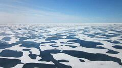 As the Arctic warms small melt ponds are forming over vast expanses, like the one shown here in the Chukchi Sea between Siberia and Alaska in July 2011.