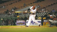 In this Dec. 29, 2012 photo, Criollos of Caguas' Carlos Rivera hits a ball during a baseball game against Leones of Ponce in Caguas, Puerto Rico. On an island where the name of Roberto Clemente is emblazoned on stadiums, streets and schools, the sport of baseball is poised to make a late-inning rally. In the past year, Major League Baseball reported the second-highest number of signings from Puerto Rico since the year 2000.