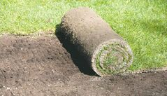 Sodding is more expensive than seeding but the end result is produced much more quickly. Fall is the ideal time for installation and helps to keep your watering costs down.