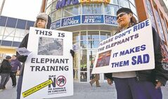 Members of the Humane Education Network demonstrate against the exotic-animal circus at the MTS Centre.