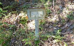 A tin marker, likely issued by the Dept. of Indian Affairs, marks the resting place of a student from the St Joseph's Indian residential school in Chapleau, Ont., photographed on Aug. 12, 2012. THE CANADIAN PRESS/HO, Alex Maass