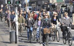 Rush hour in Copenhagen. Nearly 40 per cent of the city's population ride their bikes to work every day.
