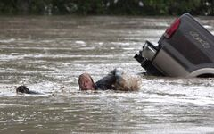 Kevan Yeats swims after his cat Momo to safety in High River, Alta. on June 20, 2013.