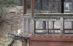 The overlook platform at the Pittsburgh zoo. Reports indicate the child hit the netting at left before falling into the enclosure.