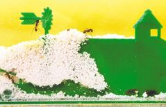 Ant farms can be an easy way to help nurture a child's interest in insects.