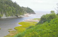 Big Salmon River is one of many scenic stops along the Fundy Trail Parkway.