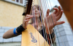 Sheila Grycki plays the harp at the Medieval Festival in Cooks Creek Saturday.