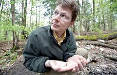 Scott Tarof, a science advisor with The Earth Rangers Foundation, holds a red eft newt that he found in the Happy Valley Forest in King Township.