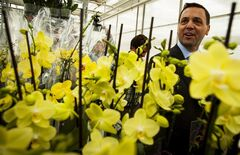 Ontario Progressive Conservative Party Leader Tim Hudak passes orchid flowers as he tours Balfour Greenhouses during a campaign stop in Fenwick, Ont., Wednesday, May 28, 2014. THE CANADIAN PRESS/Aaron Lynett