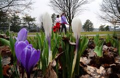Women walk past spring flowers in Commissioners Park in Ottawa on Tuesday, April 22, 2014. A fresh survey on Canada's manufacturing industry suggests warmer weather is not yet having the desired effect of heating up the sector. THE CANADIAN PRESS/Sean Kilpatrick