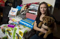 Hull's Haven Border Collie Rescue volunteer Jill Britton with Chubbs and remaining supplies at her home Saturday afternoon. Britton said 44 boxes of dog food and supplies were stolen from behind her Windsor Park home on Tuesday evening.
